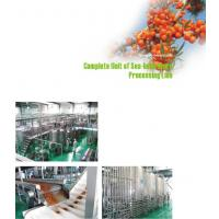 Wholesale Juice Extractor Machine Fruit Juice Processing Line 20T/D-2000T/D Capacity from china suppliers