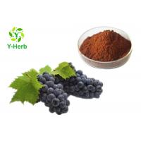 Wholesale Organic Grape Seed Extract Powder Proanthocyanidins 95% OPC Polyphenols 70% Procyanidine from china suppliers