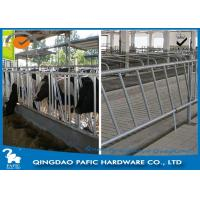 Wholesale Individually Feeding Dairy Cow Headlock Stockade Plate Length 8 Meter from china suppliers