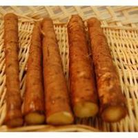 Wholesale Burdock Root (niubang) from china suppliers