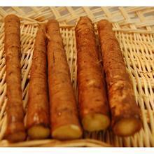 Wholesale Burdock Root (niubang) from china suppliers