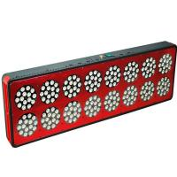 Wholesale Cidly led de cultivo led grow lights 600 watt For tomatoes Plants used With High quality from china suppliers
