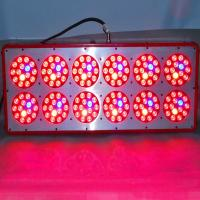 Wholesale 20% OFF Big promotion factory price led plant grow lights,medical plants growth and flower from china suppliers