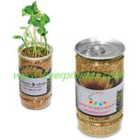 Wholesale Sunflower-in-a-Can  from china suppliers