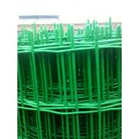 Wholesale 60×60 square hole wire mesh PVC coated holland wire mesh fence from china suppliers