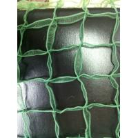 Wholesale Green Windbreak Safety Slope Netting / garden Mesh Net Width 20MD - 100MD from china suppliers