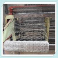 Wholesale 1/2 3/4 5/8 small hole chicken wire mesh/hexagonal wire mesh from china suppliers