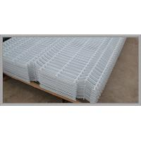Quality Welded Wire Mesh Panel Fence,PVC Coated Fencing Wire Mesh for sale