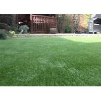 "Wholesale Airport Landscape Artificial Grass PE8800Dtex monotape , 5 / 16"" from china suppliers"