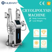 Wholesale Hot sale CE approved weight loss newest cool tech fat freezing slimming machine four cryo handles ! from china suppliers