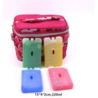 Wholesale OEM 220ml Bpa Free Hard Plastic Gel Cool Packs Fit & Fresh Ice Packs from china suppliers