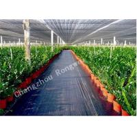 Wholesale Landscape / Garden Weed Control Membrane / Fabric Ground Cover Lining Mat for Greenhouse from china suppliers