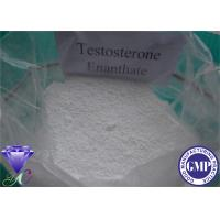 Wholesale Injectable Testosterone Anabolic Steroid Testosterone Enanthate CAS 315-37-7 from china suppliers