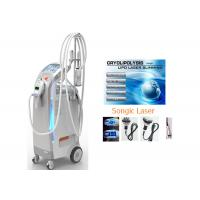 Wholesale RF Body Shaping Machine 3pc Cryolipolysis Fat Freezing for Women from china suppliers