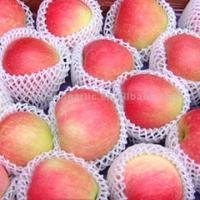 Wholesale EPE Foam Fruit Net Extruder High quality PE foam apples net production machine from china suppliers
