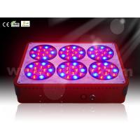 Wholesale Cidly Apollo 6 LED Grow Light for Hydroponic Home Garden Greenhouse LED Grow Lighting from china suppliers