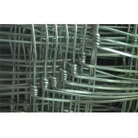 Wholesale Hot Dipped Galvanized Steel Grassland Field Wire Fence With 1.6 mm - 3.5 mm Wire Gauge from china suppliers