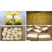 Green Original Farm Agricultural Products Co., Ltd