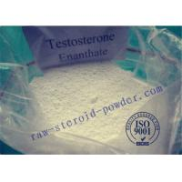 Buy cheap Testosterone Enanthate Anabolic Raw Steroid Powders to increase testosterone levels from wholesalers
