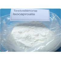 Wholesale Effective Raw Steroid Powder Long Ester Testosterone Isocaproate For Man CAS 15262-86-9 from china suppliers