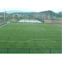 Wholesale University Playground Synthetic Soccer Grass Turf 1100Dtex 50mm , Gauge 3/8 from china suppliers