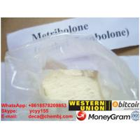 Wholesale Methyltrienolone Methyl Trenbolone Acetate Steroid Raw Powder Metribolone Muscle from china suppliers