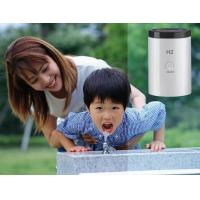Wholesale Durable Hydrogen Water Dispenser , Women Home Facial Spa Machine from china suppliers