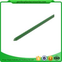 Wholesale Green Steel Garden Stakes PE Plastic Coated 8mm Diameter , 60cm Length  Plant support Steel with plastic coated from china suppliers