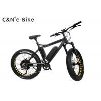 Wholesale 2 Wheels Electric Assist Fat Tire Mountain Bike With Disc Brakes 40 - 60km/h Max Speed from china suppliers