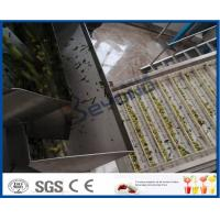 Wholesale Chinese Date Fruit Juice Processing Line , ISO9001 Fruit Pulp Processing Plant from china suppliers