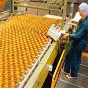 Wholesale belting conveyors modular belts conveyor flat top belts conveyor from china suppliers