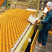 Buy cheap belting conveyors modular belts conveyor flat top belts conveyors from wholesalers