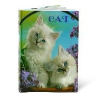 Wholesale Fancy Notebook with Hardcover from china suppliers