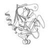 Buy cheap Animal origin free trypsin E.coli recombinant Trypsin   3800 u/mg pro from wholesalers