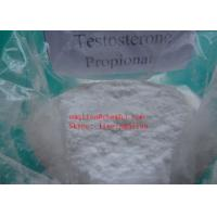 Wholesale BodyBuilding Testosterone Steroid Hormone Testosterone Propionate 57-85-2 Test P from china suppliers