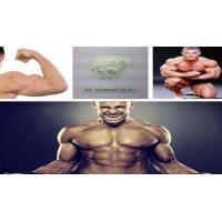 Wholesale Testosterone Anabolic Steroid Raw Hormone Powder Testosterone Isocaproate CAS 15262-86-9 from china suppliers
