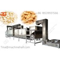pine nuts roaster machine supplier