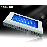 Wholesale 120W White&Blue LED Aquarium Light for Reef Growth from china suppliers