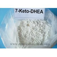 Wholesale Natural 7-keto DHEA 7-Keto-Dehydroepiandrosterone For Increasing Metabolism 566-19-8 from china suppliers