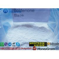 Wholesale Boldenone No Ester Pure Boldenone Base Raw Steroid Powder Muscle Anabolic Hormone from china suppliers