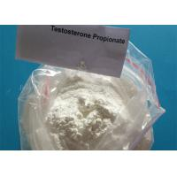 Wholesale Supply Free Sample Testosterone Propionate Powder 57-85-2 , Muscle Gaining  Steroid from china suppliers