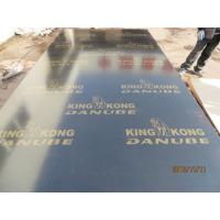 Wholesale BLACK FILM FACED PLYWOOD, KINGKONG BRAND 。MR GLUE, POPLAR CORE, BLACK FILM or BLACK PRINTED FILM.HIGH QUALITY from china suppliers