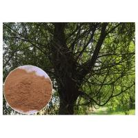 China Brown Antimicrobial Plant Extracts , Salicin White Willow Bark Extract Relieving Headache on sale