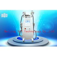 Wholesale Cryolipolysis Coolsculpting Fat Removal Machine , Lipo Laser Cavitation RF Beauty Equipment from china suppliers