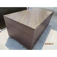 Wholesale MERINOPLEX  FILM FACED PLYWOOD, building construction plywood.form work from china suppliers