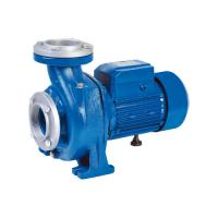Wholesale NFM Series Micro Agricultural Water Pump For Clean Water 0.8HP / 0.6KW Three Phase from china suppliers