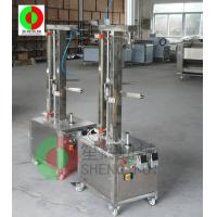 Wholesale TP-250 Stainless steel fruits peeling machinefor industry from china suppliers
