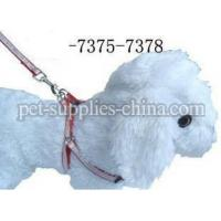 Wholesale dog leash and dog thoracodorsal,dog leashes for running(AF7376) from china suppliers