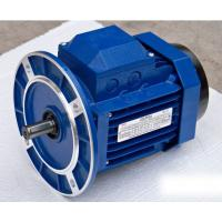 Wholesale Blue YS Series Frequency Conversion Motor with Aluminum Alloy Housing from china suppliers