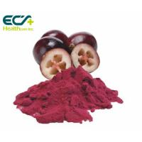 Wholesale Red Cranberry Fruit Powder , Natural Food Supplement Powder Prevent Cancer from china suppliers